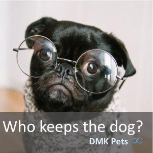 Who keeps the dog?